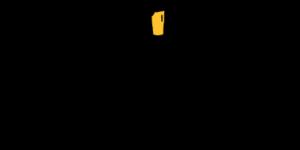 logo_birrone-400x200